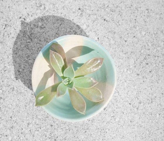 Succulent_AquaBowl1