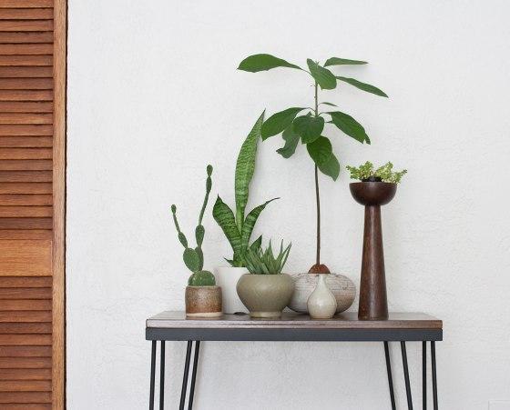 HairpinTable_Plants2