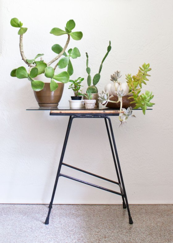 Succulents_SmallTable
