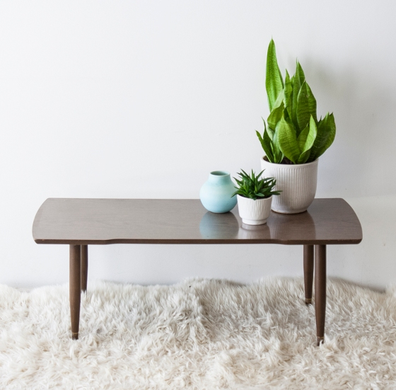 MidCentury_CoffeeTable5